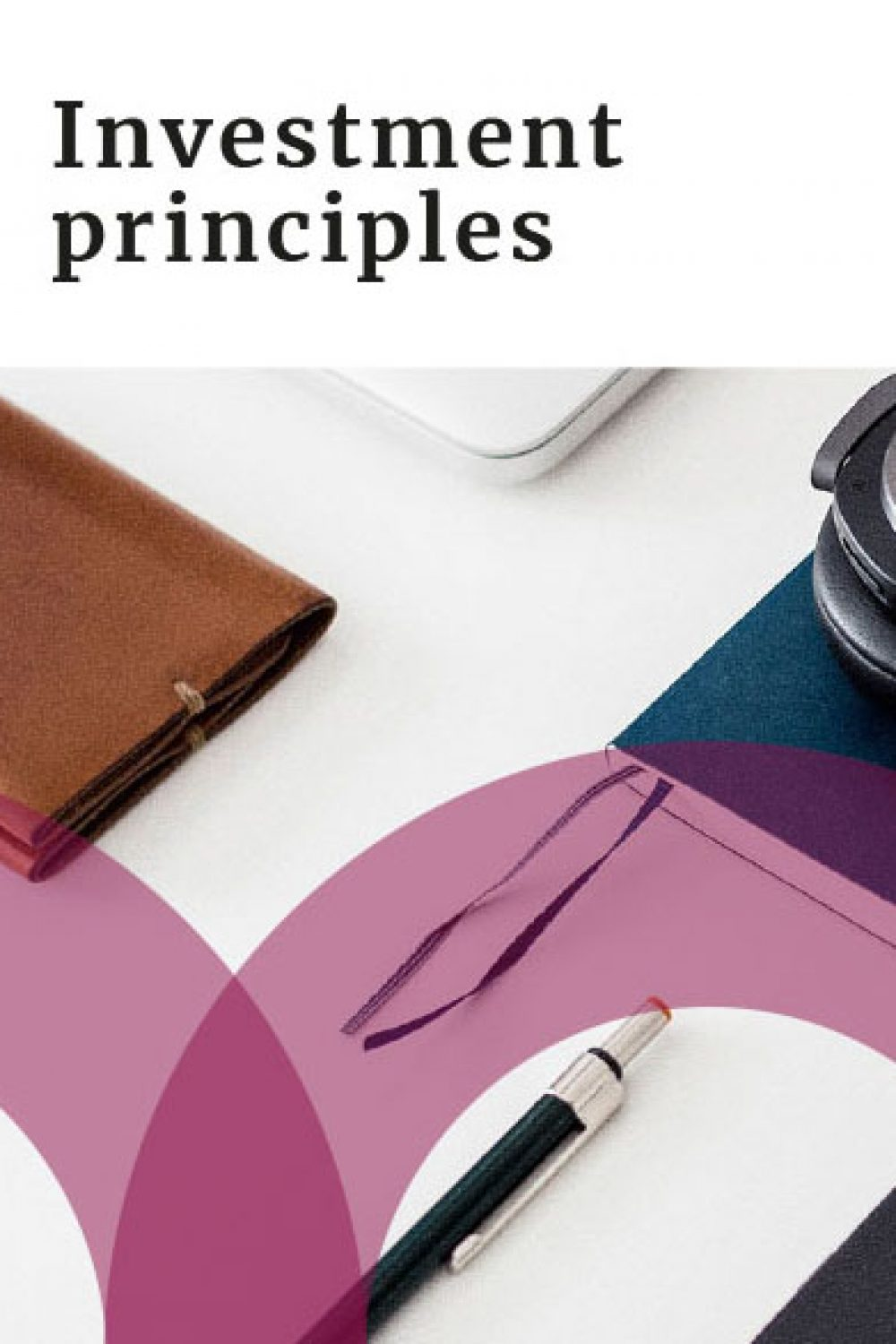 Our Investment Principles